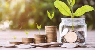 Ini Perbedaan Investasi Jangka Pendek dan Jangka Panjang Yuk Kenali