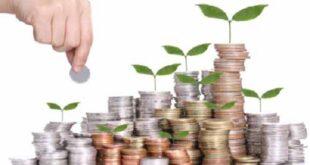Pengertian Investasi Jangka Pendek Adalah dan Contohnya